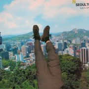 2014 SOUTH KOREA Seoul Tower 2