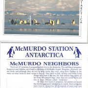 1994 McMurdo Penguins