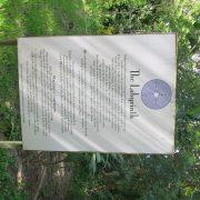IMG9839