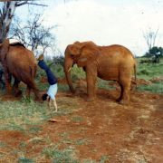 1980TsavoParkKenya