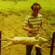 1993 THAILAND Country Life